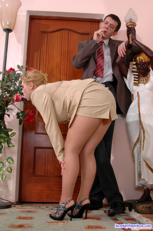 Other Secretary Stocking Sex Tan 67