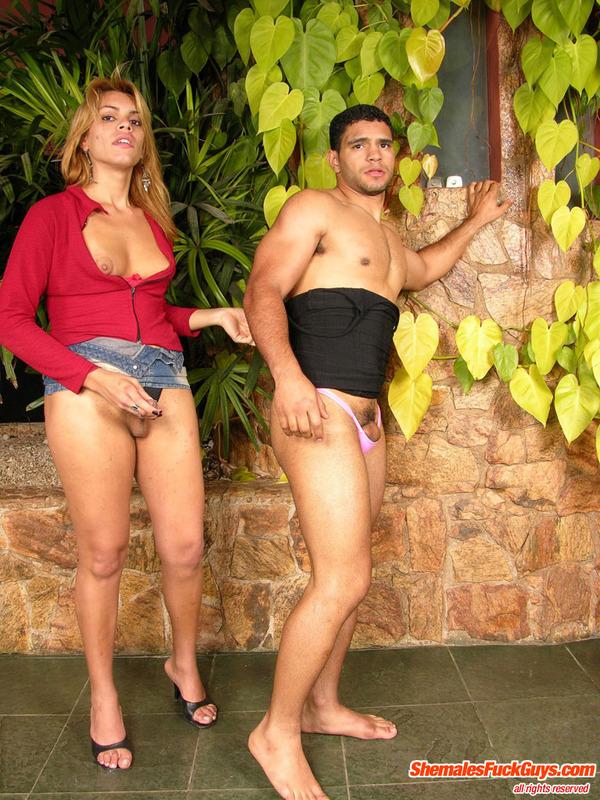 brazil shemales