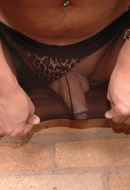 Pantyhose Tranny