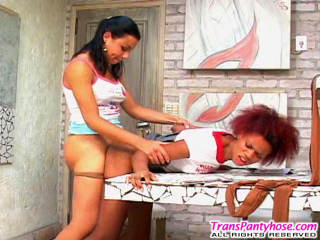 rochele tranny pantyhose sex action