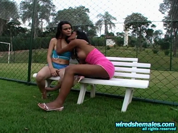 Brazilian Shemale Sex Miriany 77